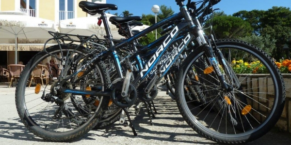 Mountain bike and electric bike rental